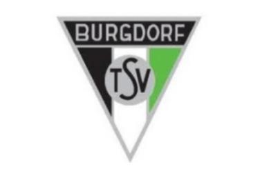 2017-03-24 13_57_51-Beitrag bearbeiten ‹ TSV Burgdorf Fussball — WordPress